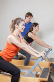 Women training. Young women training in the gym Stock Image