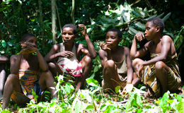 Women from a tribe of pygmies sit in the forest. Stock Photography