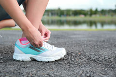 Women tying sport shoe prepare jogging at park. Royalty Free Stock Photos