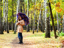 Women with umbrella in a park. Young women under umbrella in a birch park stock images