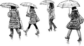 Women under umbrellas Stock Image