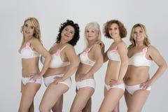 Women in underwear Royalty Free Stock Photos