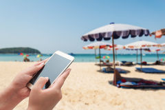 Women using smartphone top on blurred blue sea Royalty Free Stock Image
