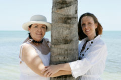 Women on Vacation. Two women embracing a palm tree on their vacation Royalty Free Stock Image