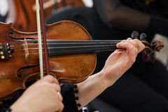Women Violinist Playing Classical Violin Stock Images