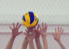 Women volleyball players hands blocking ball Stock Image