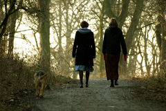 Women Walking Dog. Two women walking a dog through trees Stock Photography