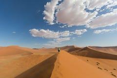 Women walking on sand dune 45, Namib desert stock image