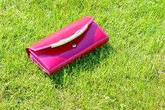 Women wallet on the grass. Royalty Free Stock Image