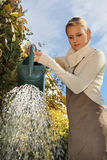 Women watering her plants Royalty Free Stock Photos