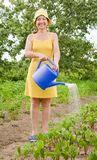 Women watering vegetables Stock Images