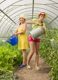 Women watering vegetables Royalty Free Stock Image