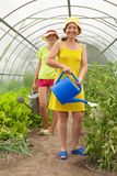 Women watering vegetables Royalty Free Stock Images