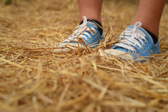 Women wearing blue shoes standing on rice straw. Stock Photo