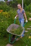 Women wheel a barrow. Young pretty women wheel a barrow with weeds royalty free stock photos