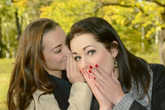 Women whispering Royalty Free Stock Image