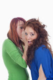 Women whispering gossip Royalty Free Stock Photography