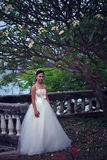 Women in white dress bride Stock Photography