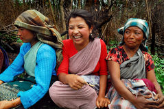Women worker at Northeast India Stock Image
