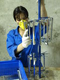 Women working in the chemical factory Royalty Free Stock Photography
