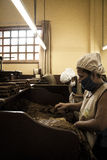 Women working in a cigar factory Royalty Free Stock Photos