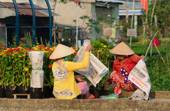 Women working at the flower garden in Sadek, Vietnam Stock Photo