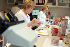 Women working in the lab. Aratory Royalty Free Stock Photo