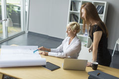 Women working in the office Royalty Free Stock Photography