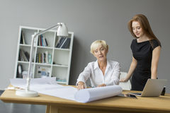 Women working in the office Royalty Free Stock Photo