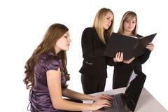 Women working in ofice stock photos