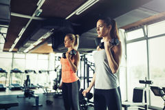 Women working out in gym Royalty Free Stock Image