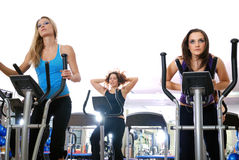 Women working out on spinning bikes at the gym Royalty Free Stock Image