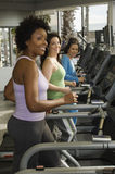 Women Working Out On Treadmill Royalty Free Stock Photo