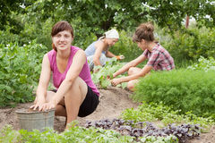 Women working in  vegetable garden. Three women working in her vegetable garden Stock Images