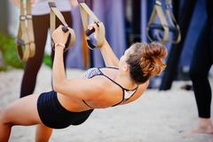 Women workout arms with trx fitness belts in nature makes a push up the upper body trailer chest shoulders biceps triceps. Concept. Of health Royalty Free Stock Photos