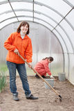 Women works at greenhouse Royalty Free Stock Image