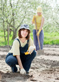 Women works at vegetables garden Royalty Free Stock Photography