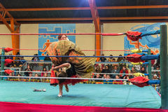 Women Wrestling in Bolivia Stock Photography