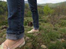 Women& x27 ; chaussures de s sur l'herbe Photos libres de droits