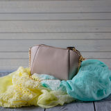 Women's accessories on wooden background Stock Photography