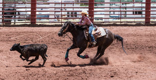 Women's Calf Roping Stock Photos