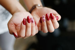 Women's hands with manicure Royalty Free Stock Image