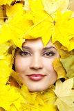 Women in the yellow autumn leaves. Royalty Free Stock Photo