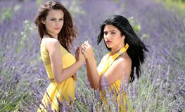 Women in Yellow Dress Holding Hands in Purple Grassland Royalty Free Stock Photography