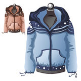 Womens blue winter warm sports jacket Stock Image
