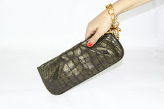 Womens clutch day handbag Stock Photography