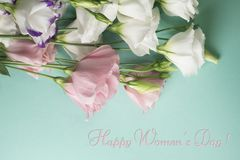 Womens day card. White eustoma flowers on a light turquoise background royalty free stock photo
