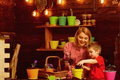 Womens day concept. Mother and little son potting flower for womens day. Mother and child prepare for womens day. Celebration. Happy womens day stock photos