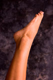 Womens feet Stock Photography