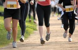 Womens fun run10 Stock Photos